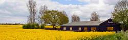 Oasis Barn