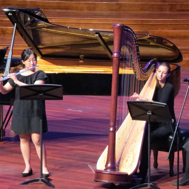 Performance at the Brisbane City Town Hall with Tijana Kozarcic (2016)