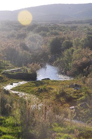 Sierra de las Ánimas, Uruguay Natural, Campo, Arroyo Tararias.