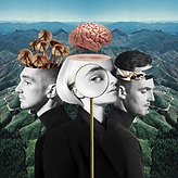 Clean Bandit - What Is Love.png