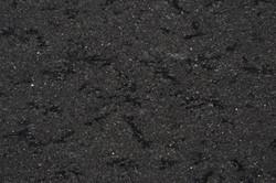 new-spice-black.jpg
