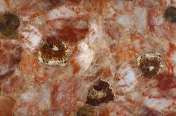 Fossilized Haematoid Quartz.png