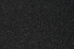 bengal-black.jpg