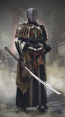 samurai training.jpg