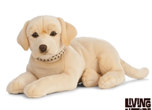 Labrador gold  Living Nature - 60 cm existe en chocolat