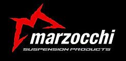 mountain bike suspension servicing for marzocchi