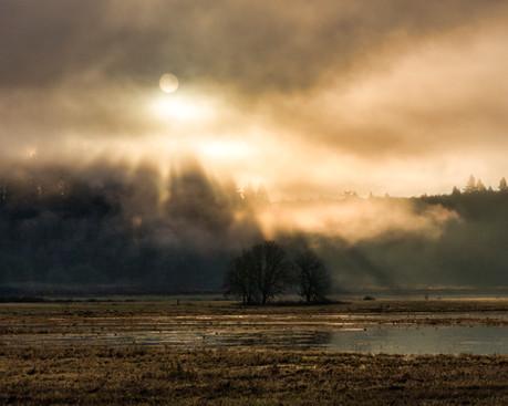Ridgefield National Wildlife Refuge Washington_03