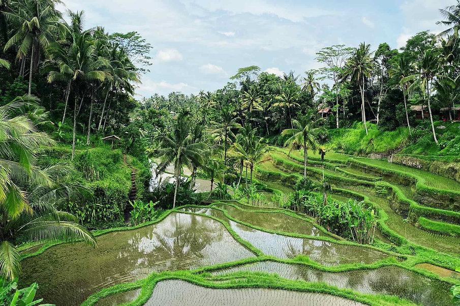 viaje tailandia y bali indothai.jpg