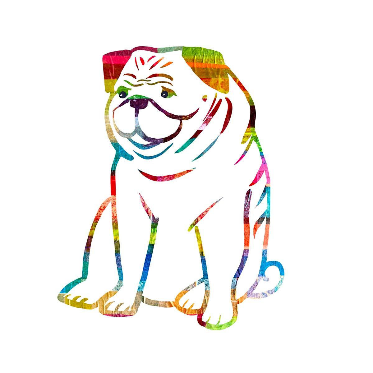 19A21 Pug LO