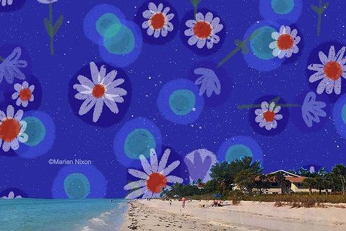 Sanibel Island Beach Art, Coastal Wall Decor