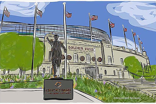 Soldier Field Wall Art, Chicago Bears Print, Football Fan Gift