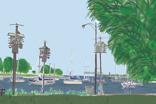 Chicago Art Print, Montrose Harbor Illustration
