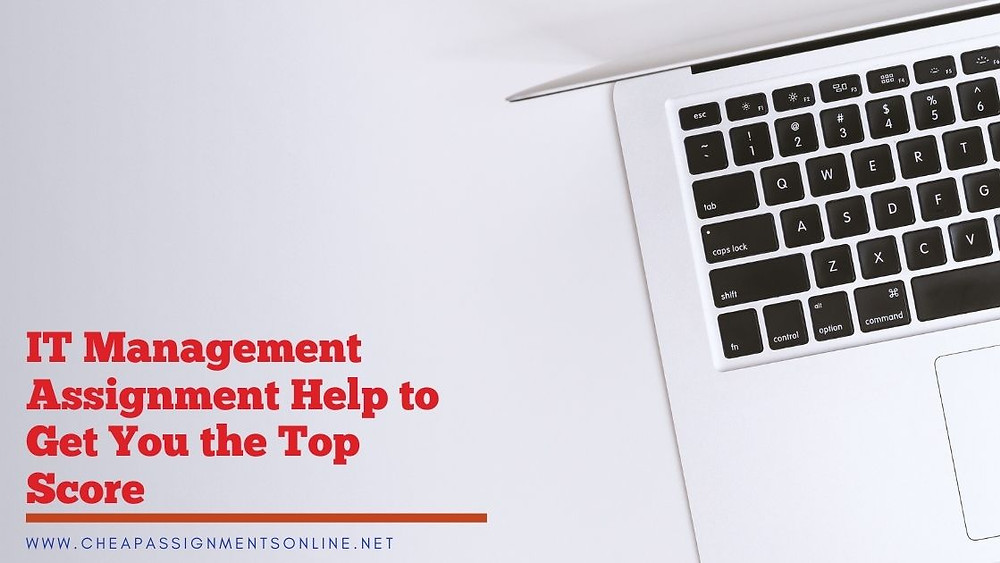 IT Management Assignment Help to Get You the Top Score