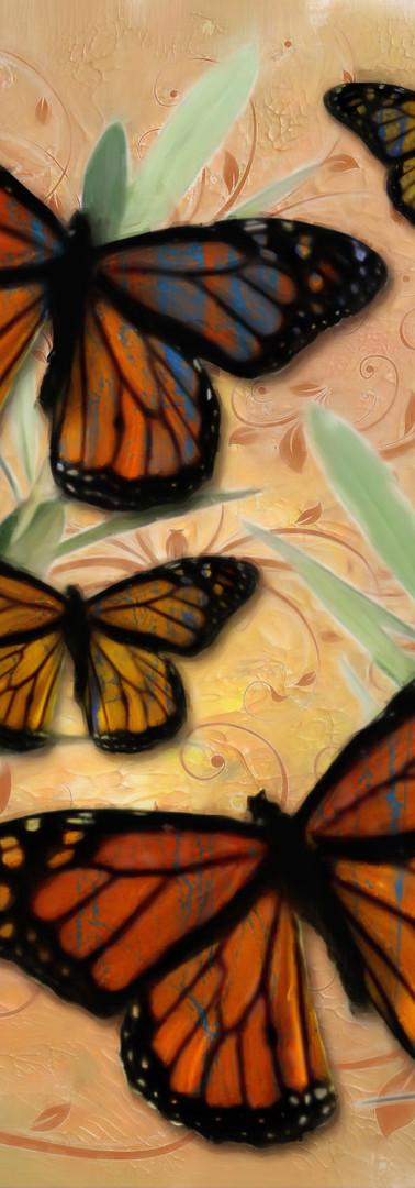 Sergio's butterflies