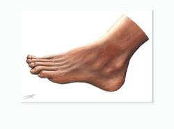 wives-foot