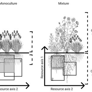Figure 1. from Barry et al. 2019