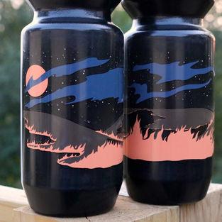 Gravel City Night Lights water bottle