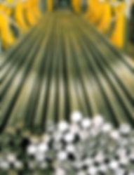 SLCDWebPagePix.jpg