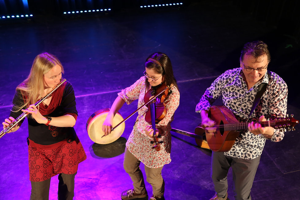 Pure Irish Drops musicians.JPG