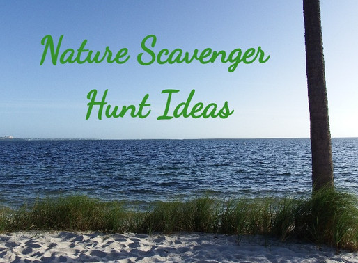 On the Hunt: Nature Scavenger Hunt Ideas