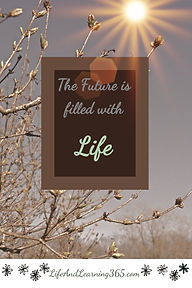 The Future is Filled with Life, LifeAndL