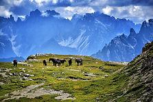 the-three-peaks-of-lavaredo-2972497_1920