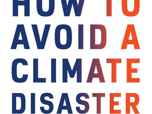 How To Avoid A Climate Disaster, Bill Gates