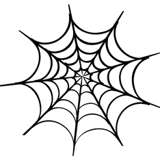 spider-web.png