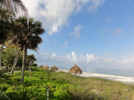 Wo Florida paradiesisch ist...