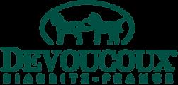 logo-dvx-hd.png