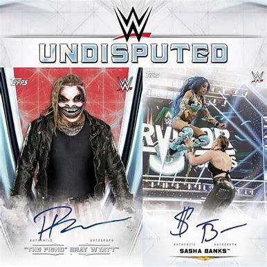2020 WWE Undisputed