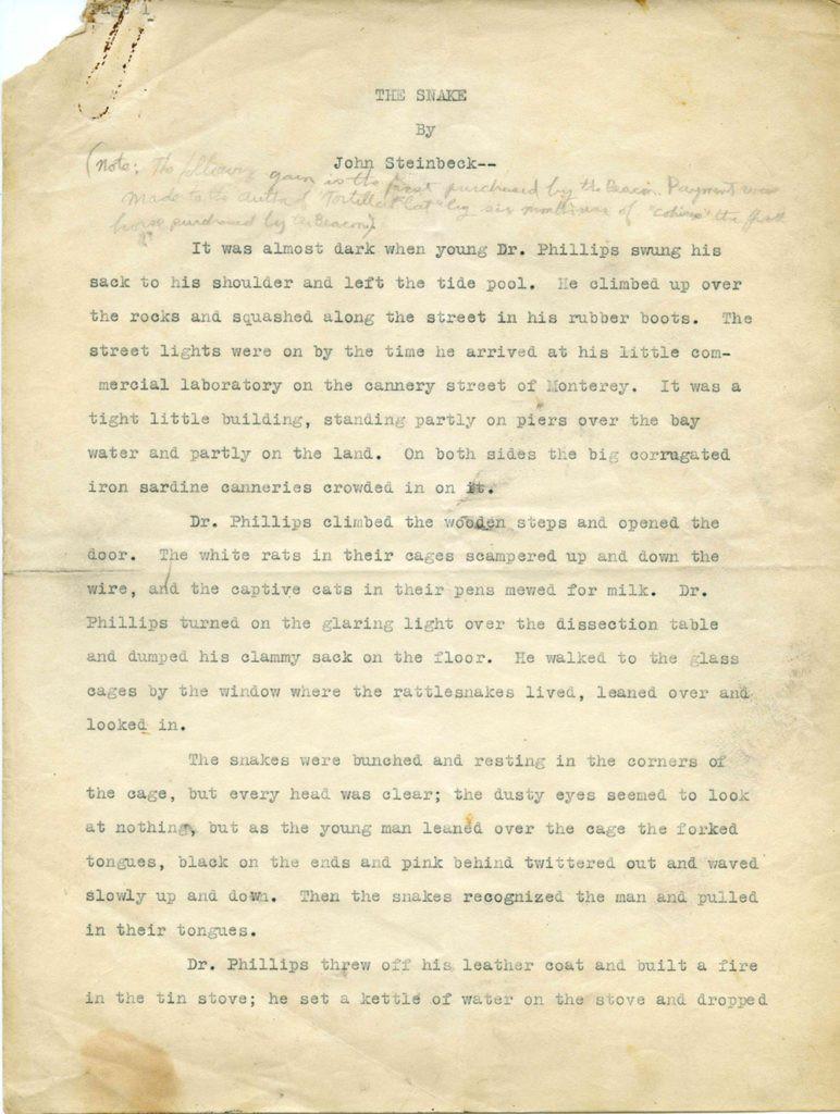 the-snake-manuscript-772x1024