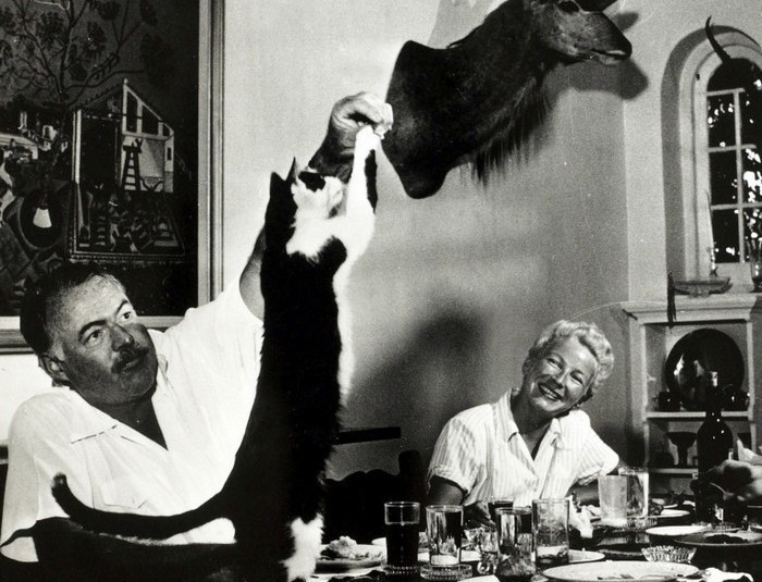 Literature Personalities. pic: circa 1940's. Author Ernest Hemingway watched by his wife Mary, feeds tit bits to the cat at dinner. Ernest Hemingway, (1899-1961) US writer of novels and short stories and Nobel Prize winner, also a keen sportsman. He was p