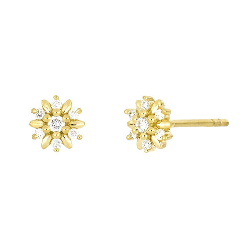 BL Icons Pointed Flower Studs