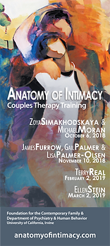 a - 2018  2019 Brochure Couples Therapy