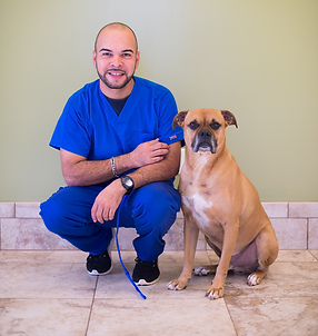 Frank Ortiz experienced Dog trainer handler behaviorist Cesar Milan aggression separation anxiety destructive behavior