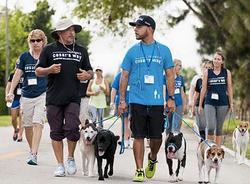 Frank Ortiz, Dog Trainer