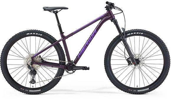 Big Trail 600 - medium