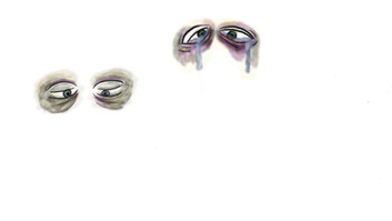 sion_eyes.jpg