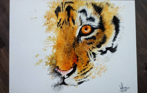 The eye of tiger