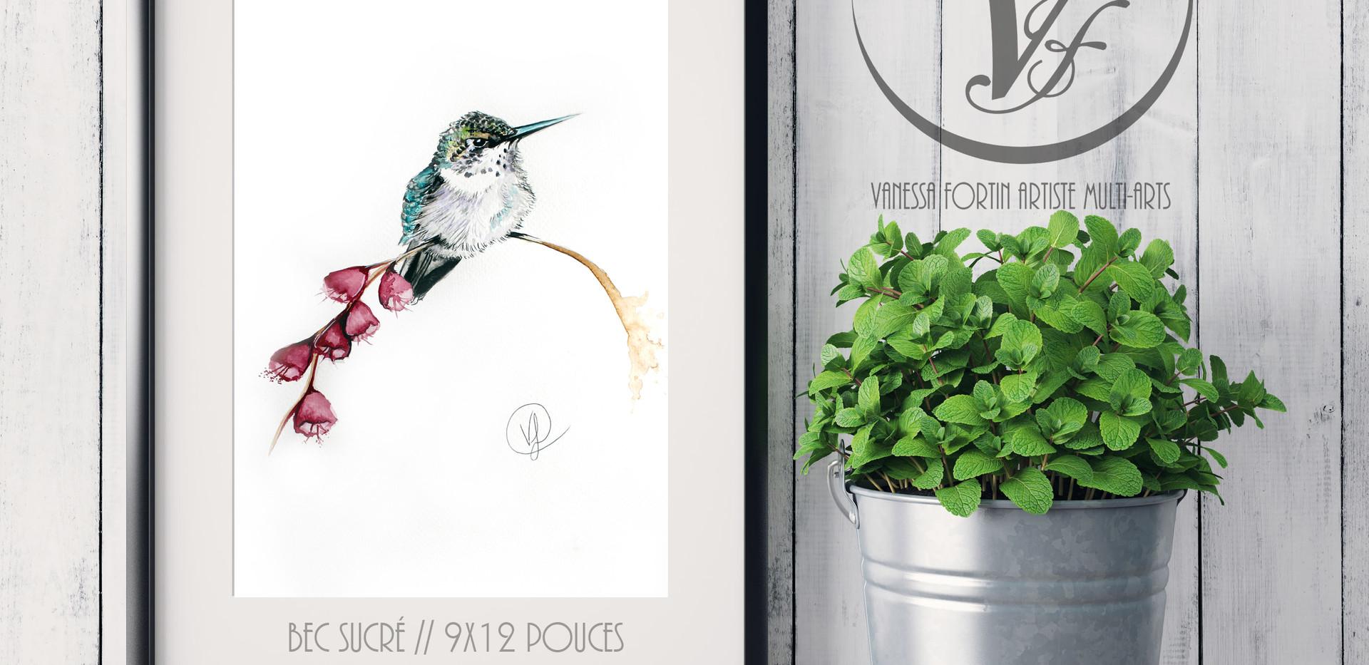 Bec sucré_ aquarelle 9x12 pouces _ JANVI