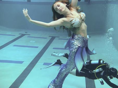 Sea Siren Summer Overview!
