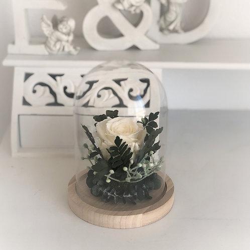 Stabilisierte Rose im Glass Glocke (weiss)