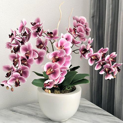 Grosses Arrangement mit Orchidee in einer Vase, 5 Zweige