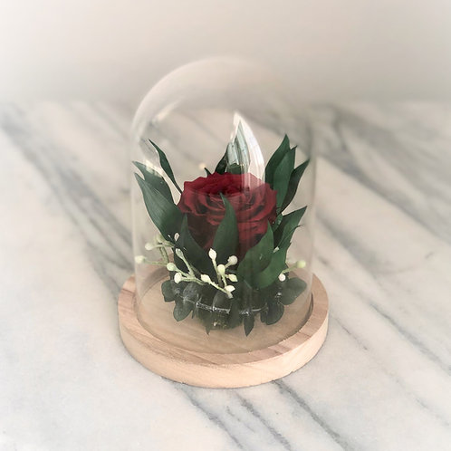 Stabilisierte Rose im Glass Glocke (rot)
