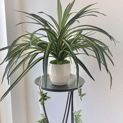 Künstliche Grünlilie in einer Vase xx71