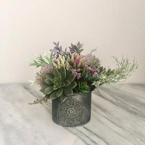 Kleines Arrangement mit Sukkulenten in einer Vase
