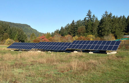golden tree farm, solar panels