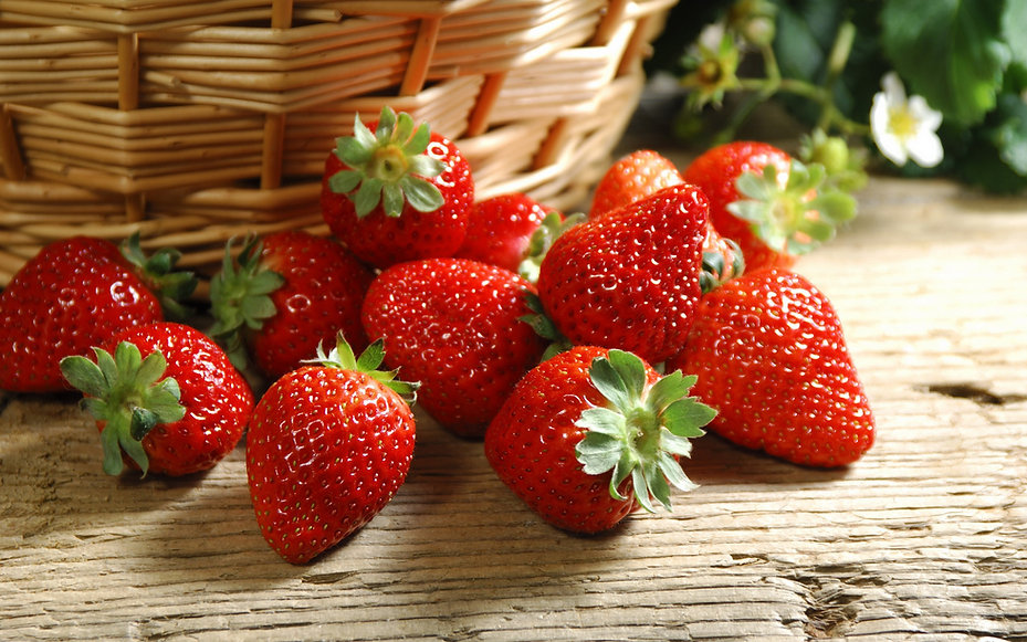 golden tree farm, strawberry