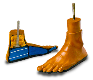 Jaipur foot